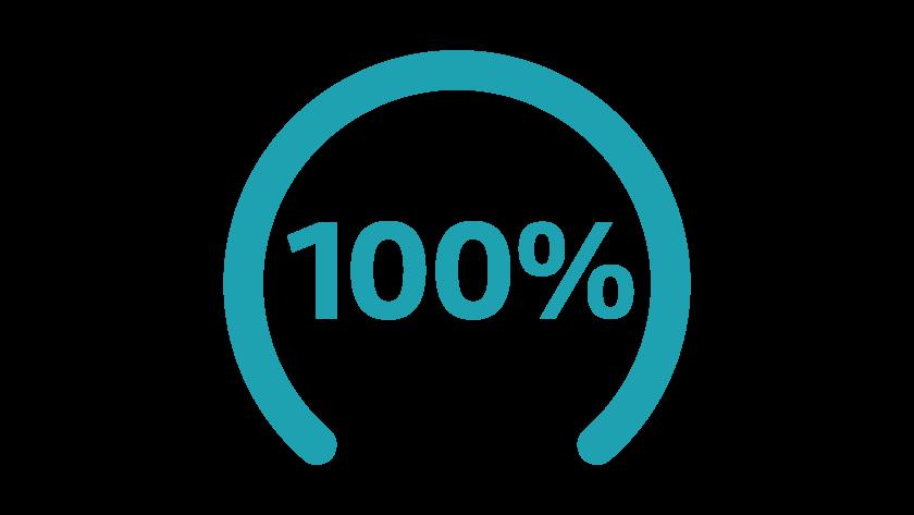 Graf 100 %